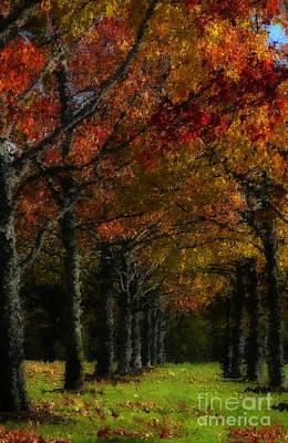 Photograph - Autumn Colors by Jeff Breiman