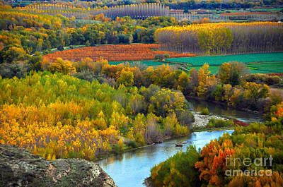 Autumn Colors On The Ebro River Art Print