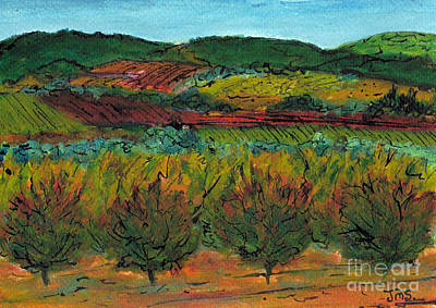 Autumn Colours Languedoc Art Print by Jackie Sherwood
