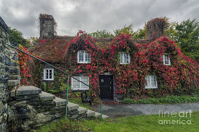 Photograph - Autumn Cottage by Ian Mitchell