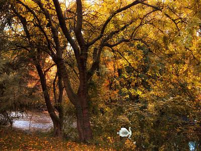 Autumn Glow Art Print by Jessica Jenney