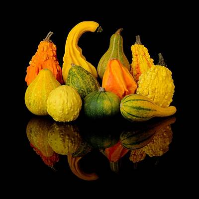Autumn Harvest Gourds Print by Jim Hughes