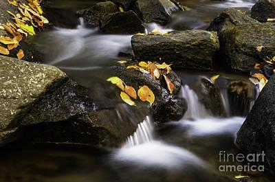 Photograph - Autumn In Hackelbarney IIi by Debra Fedchin