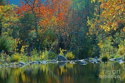 Autumn In Oak Creek Canyon Art Print