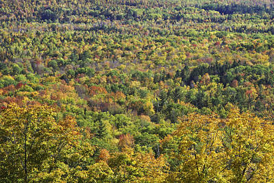 Autumn Landscape Mount Blue State Park Weld Maine Art Print by Keith Webber Jr