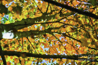Photograph - Autumn Leaves by Dale Powell