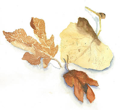 Dried Painting - Autumn Leaves by Maria Hunt
