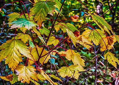 Autumn Leaves Art Print by Omaste Witkowski