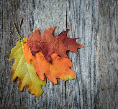 Autumn Leaves On Rustic Wooden Background Art Print