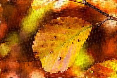 Autumn Leaves Art Print by Tommytechno Sweden