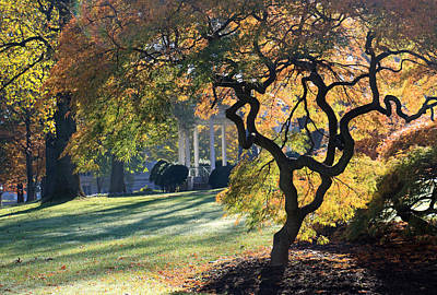 Photograph - Autumn Morning by Mary Haber