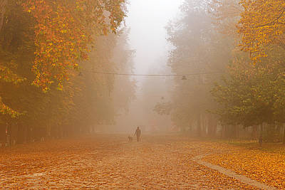 Photograph - Autumn by Okan YILMAZ