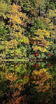 Photograph - Autumn On The Lake by Bruce Bley
