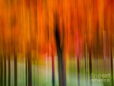 Autumn Park 2 Art Print by Susan Cole Kelly Impressions