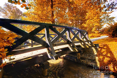 Autumn Landscape Photograph - Autumn Park by Michal Bednarek