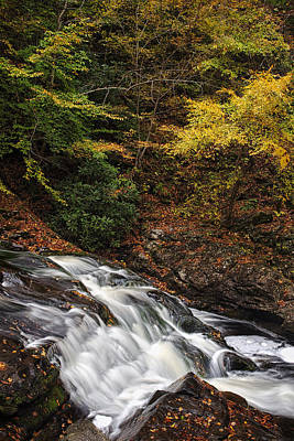 Little River Photograph - Autumn Rapids by Andrew Soundarajan