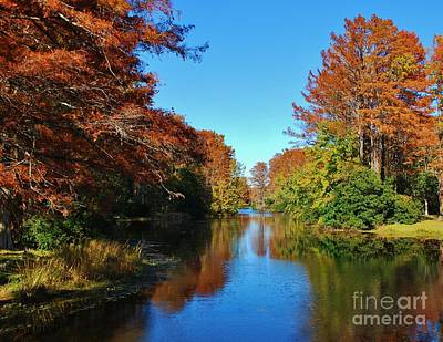 Photograph - Autumn Reflections by Bob Sample