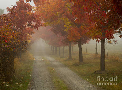 Photograph - Autumn Road by Idaho Scenic Images Linda Lantzy