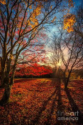 Lawn Digital Art - Autumn Shadows by Adrian Evans