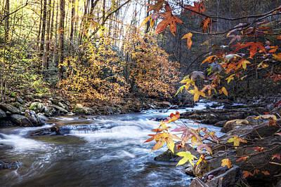 Autumn Stream Art Print by Debra and Dave Vanderlaan