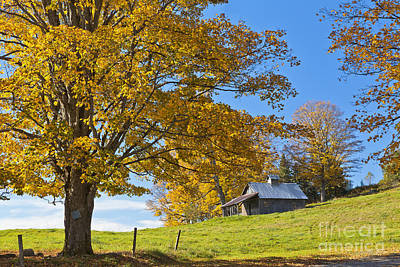 Photograph - Autumn Sugarhouse Scenic by Alan L Graham