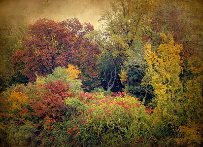 Rural Digital Art - Autumn Tapestry by Jessica Jenney