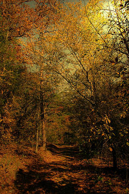 Photograph - Autumn Travels by Nina Fosdick