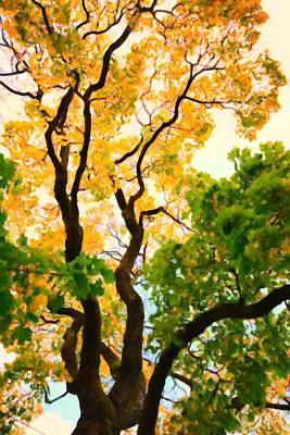 Autumn Tree Art Print by Tommytechno Sweden