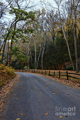 Log Cabins Photograph - Autumns Road by Paul Ward
