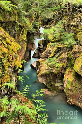 Photograph - Avalanche Creek by Adam Jewell