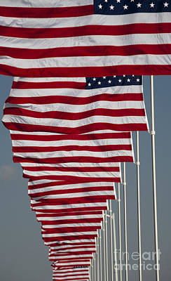 Photograph - Avenue Of Flags by Jim West
