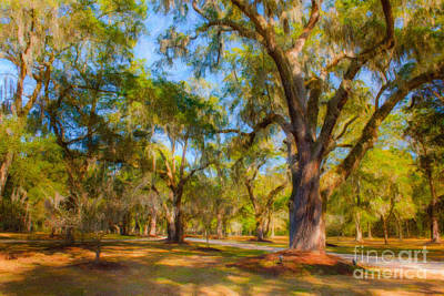 Photograph - Avenue Of Oaks by Dale Powell