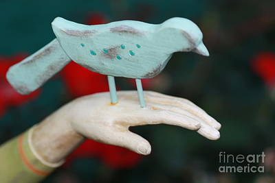 Avian On Hand Art Print by Cathy Dee Janes