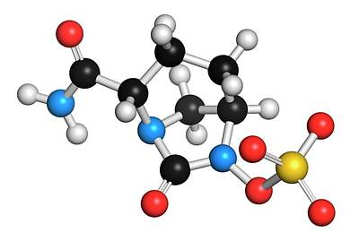 Janus Photograph - Avibactam Drug Molecule by Molekuul