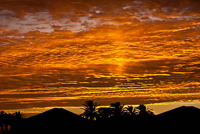 Art Print featuring the photograph 1 Awsome Sunset by Brian Williamson
