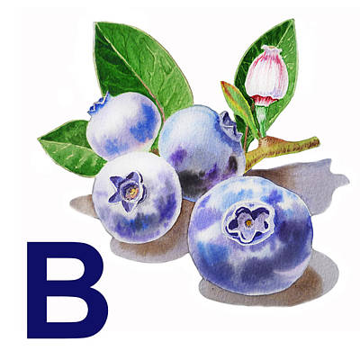 Blueberry Painting - B Art Alphabet For Kids Room by Irina Sztukowski