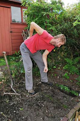 Back Pain Photograph - Back Pain From Gardening by Cordelia Molloy