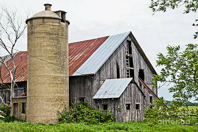Nikki Vig Royalty-Free and Rights-Managed Images - Back Roads Wisconsin by Nikki Vig