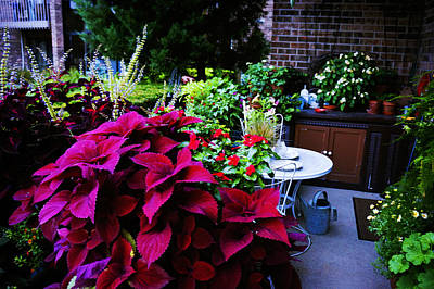 Flowerbeds Painting - Backyard Flower by Celestial Images