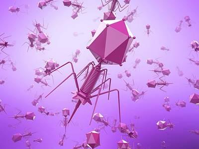 Bacteriophage Wall Art - Photograph - Bacteriophage T4 Viruses by Maurizio De Angelis