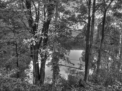 Banks Of The River Original by Andi M Gerich