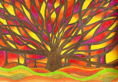 Painting - Banyan Sunset by Jennie Richards