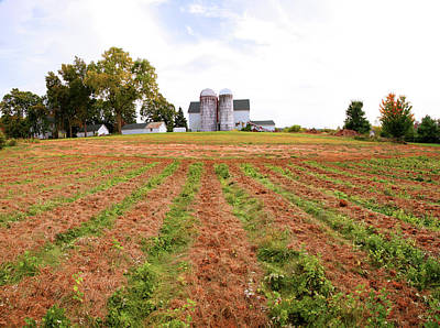 Barn And Silo In A Field, Route 34 Art Print