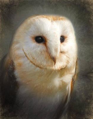Digital Art - Barn Owl by Ian Merton