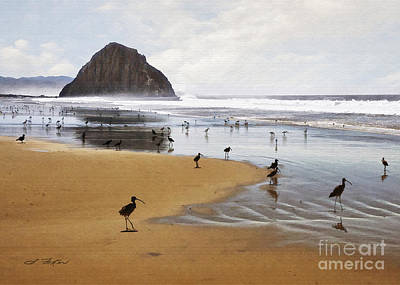 Digital Art - Beach Birds by Sharon Foster