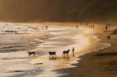 Photograph - Beach Fun by Joan Herwig