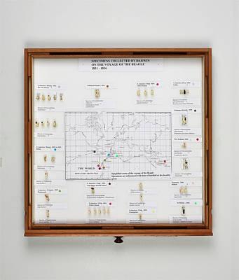 Beagle Voyage Map And Display Art Print