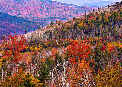 Photograph - Bear Notch View by Jeff Sinon