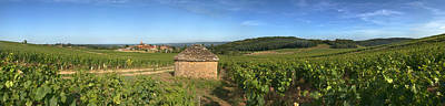 Beaujolais Vineyard, Saules Print by Panoramic Images