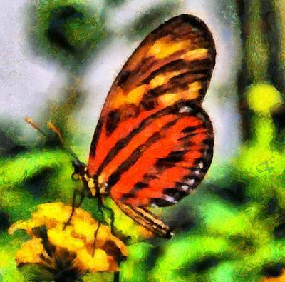 Antennae Painting - Beautiful Butterfly by Dan Sproul